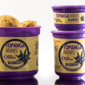 Los Angeles Media Factory | Topanga Harvest Blue Berry-3